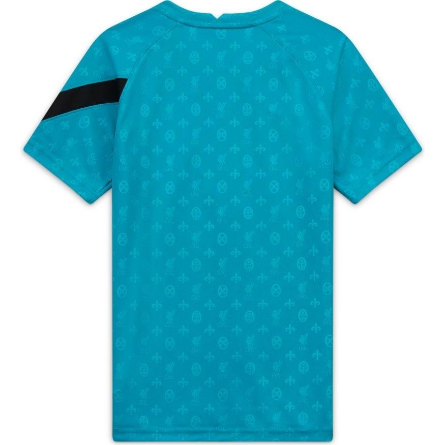 Nike Liverpool FC Pre Match Dry Fotballtrøye 20/21 Borte Barn