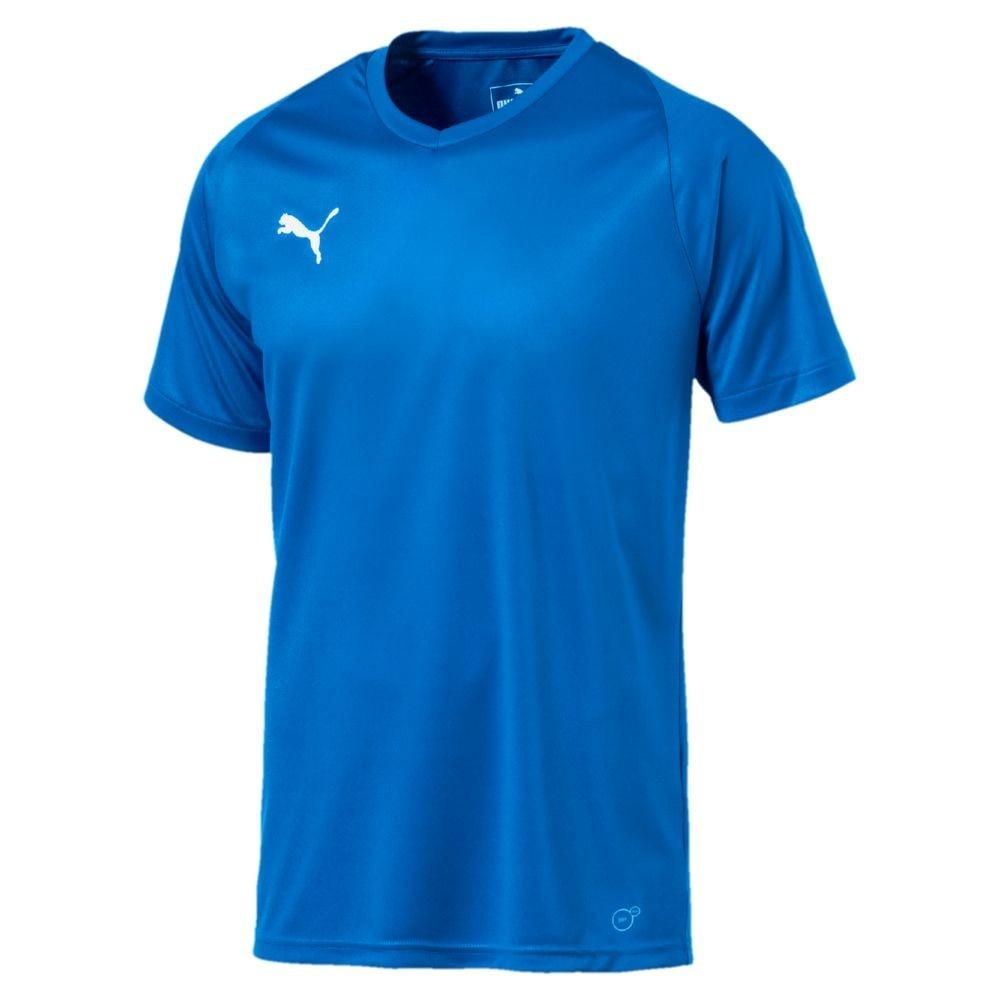 Puma Liga Core Spillertrøye Blå