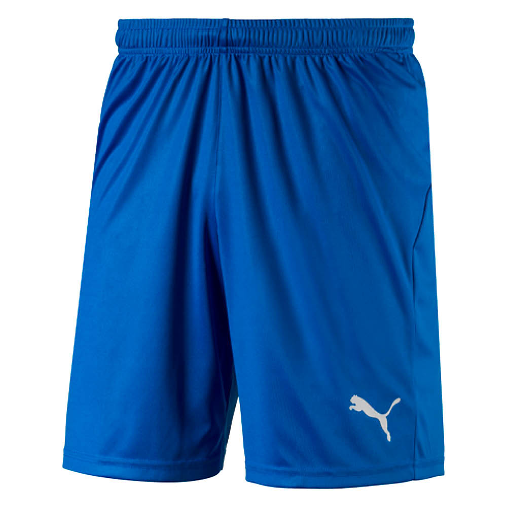 Puma Liga Core Shorts Blå